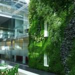 Babylon đưa thiên nhiên vào ngôi nhà bạn