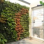 Vườn thẳng đứng ban công – B18 chung cư RichLand