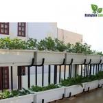 Thi công vườn rau trên mái tại công trình Hồ Ngọc Khánh – Ba Đình – Hà Nội