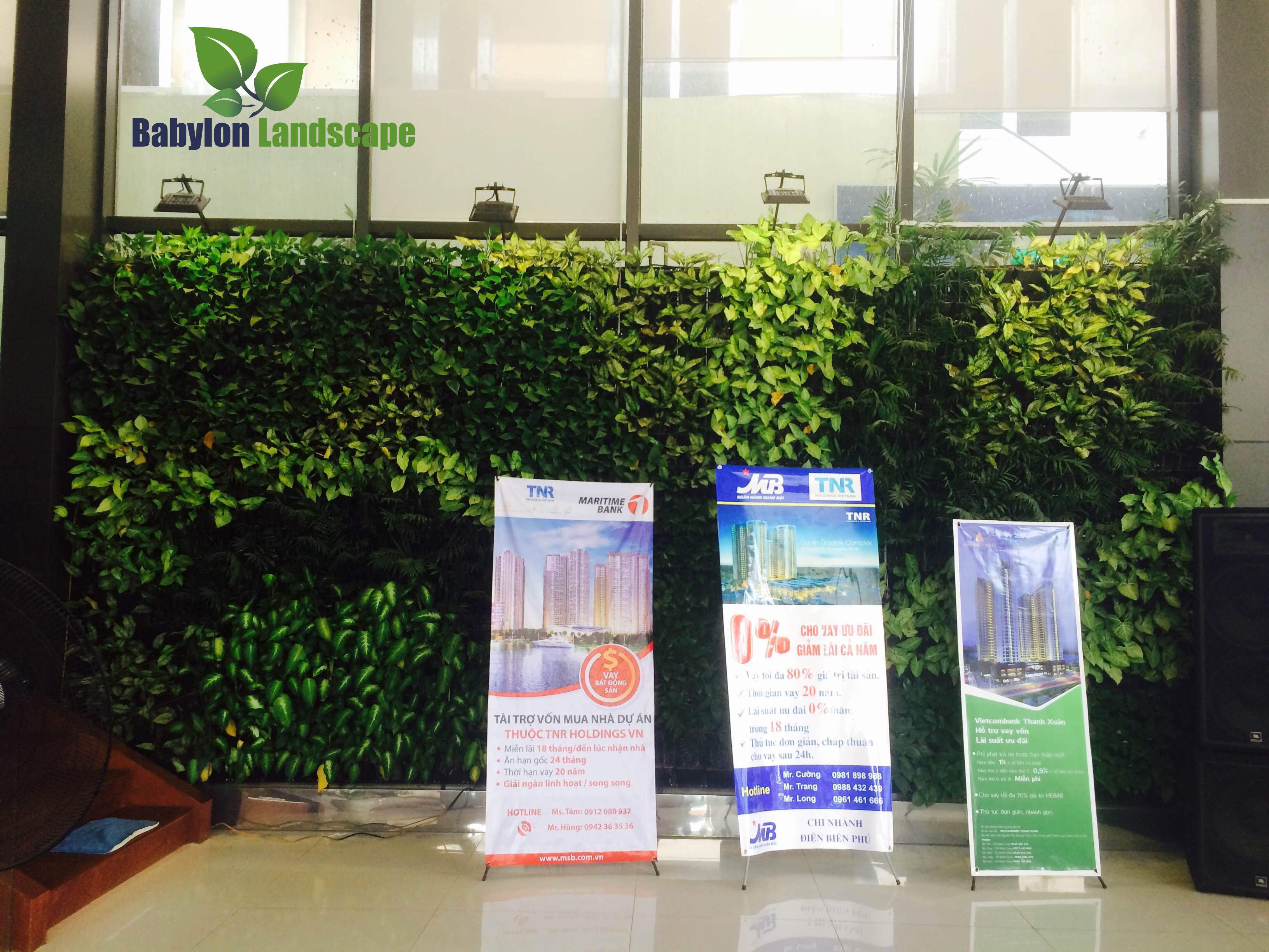 Vườn đứng trong nhà và văn phòng đại diện