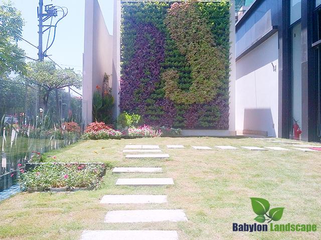vườn đứng cải tạo cảnh quan