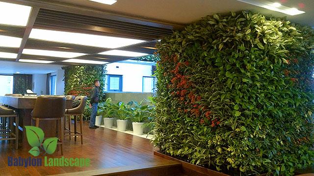 Tường cây xanh, tường cây