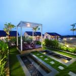 Cây trồng vườn trên mái