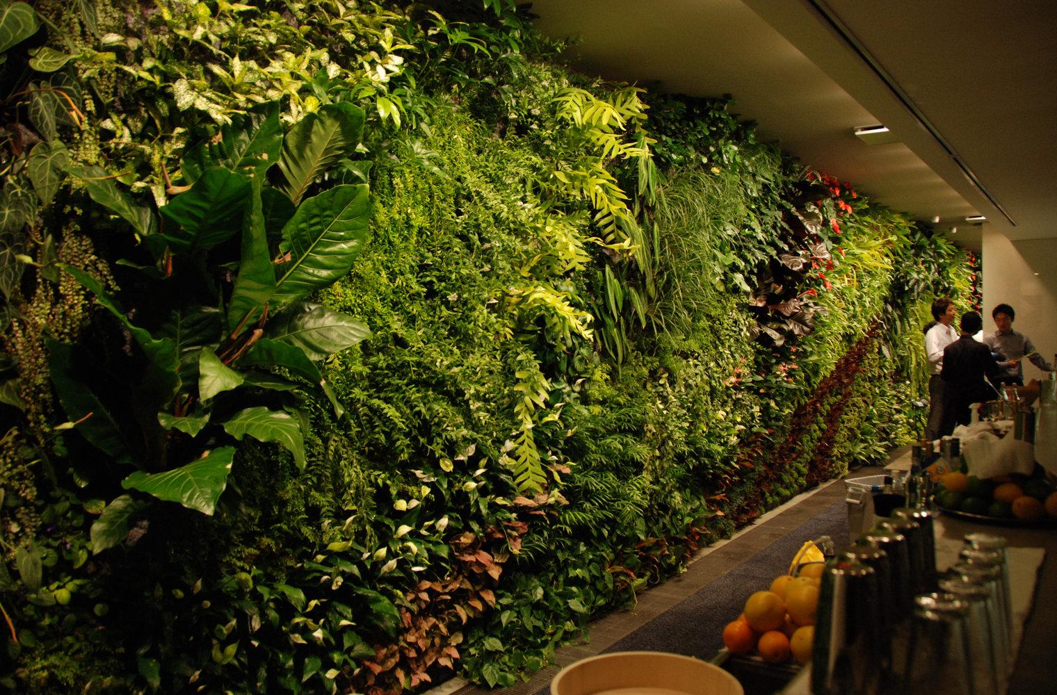 đèn chiếu sáng cho cây trồng vườn đứng trong nhà