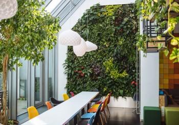 Văn phòng xanh – Phần 2: Những giải pháp cho văn phòng xanh bền vững