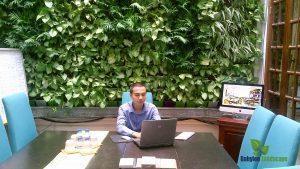 Văn phòng xanh – Từ nhu cầu đến xu hướng xanh hóa văn phòng