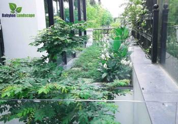 Thi công sân vườn biệt thự kiến trúc hiện đại căn 9/G10 – Ciputra
