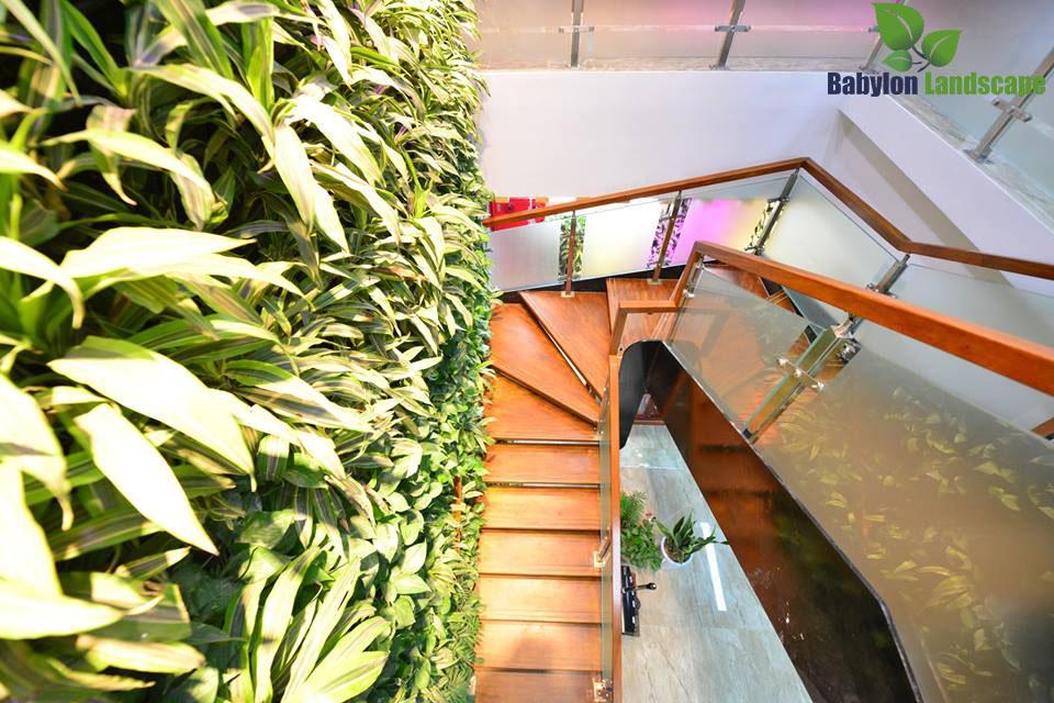 Văn phòng xanh – vườn tường –cầu thang