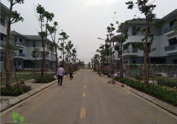 Một góc khu đô thị mới Bắc An Khánh đang trong giai đoạn hoàn thiện
