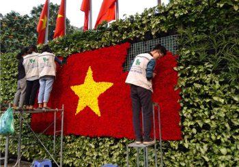 Thi công vườn tường tại vườn hoa Lý Thái Tổ - Hà Nội