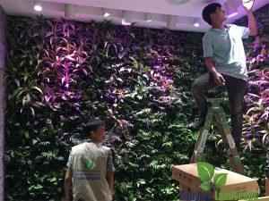 Thi công vườn đứng nội thất tại 290 Bà Triệu - Hà Nội