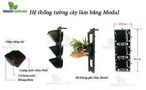 Hệ thống vườn cây treo tường làm bằng modul