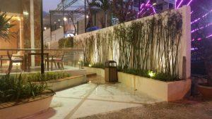 Thi công cảnh quan tại khách sạn 5 sao TMS - Đà Nẵng