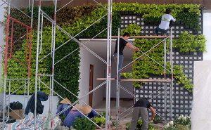 Babylon thi công vườn đứng cây thật luôn giữ sạch sẽ tại công trường