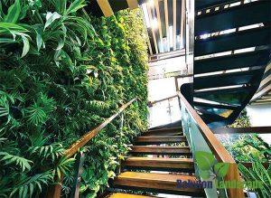 Chọn cây xanh cho vườn tường đứng trong nhà