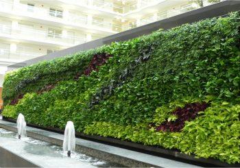 vườn tường xanh giải quyết các vấn đề nhức nhối cho không gian đô thị