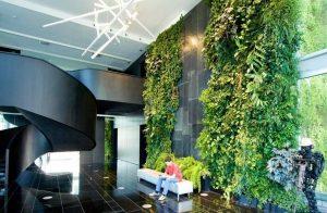 vườn tường nhà phố tạo tính thẩm mỹ cao