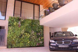 không gian xanh cho vườn tường nhà phố