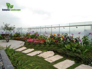 Thi công vườn trên mái tại Tây Hồ - Hà Nội