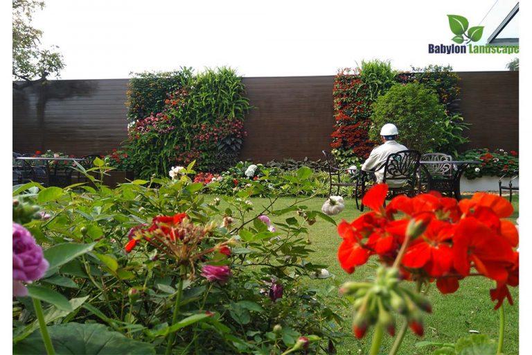 Đơn vị thiết kế thi công cảnh quan sân vườn chuyên nghiệp nhất tại Việt Nam