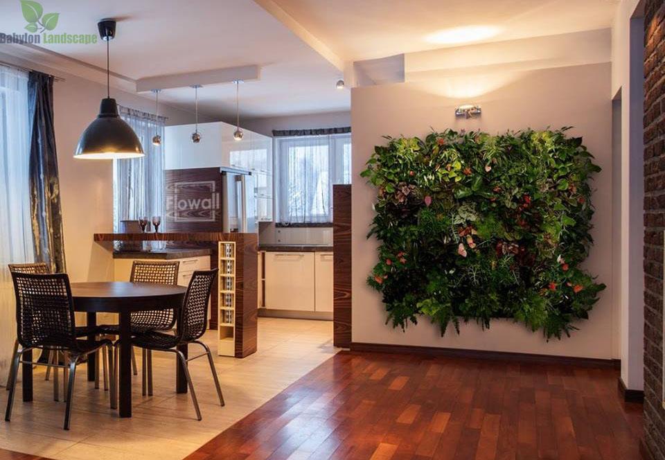 Trồng cây trong nhà giúp thanh lọc không khí