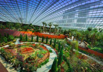Vườn biệt thự nhiệt đới trong mơ ngay tại khu đô thị Ciputra