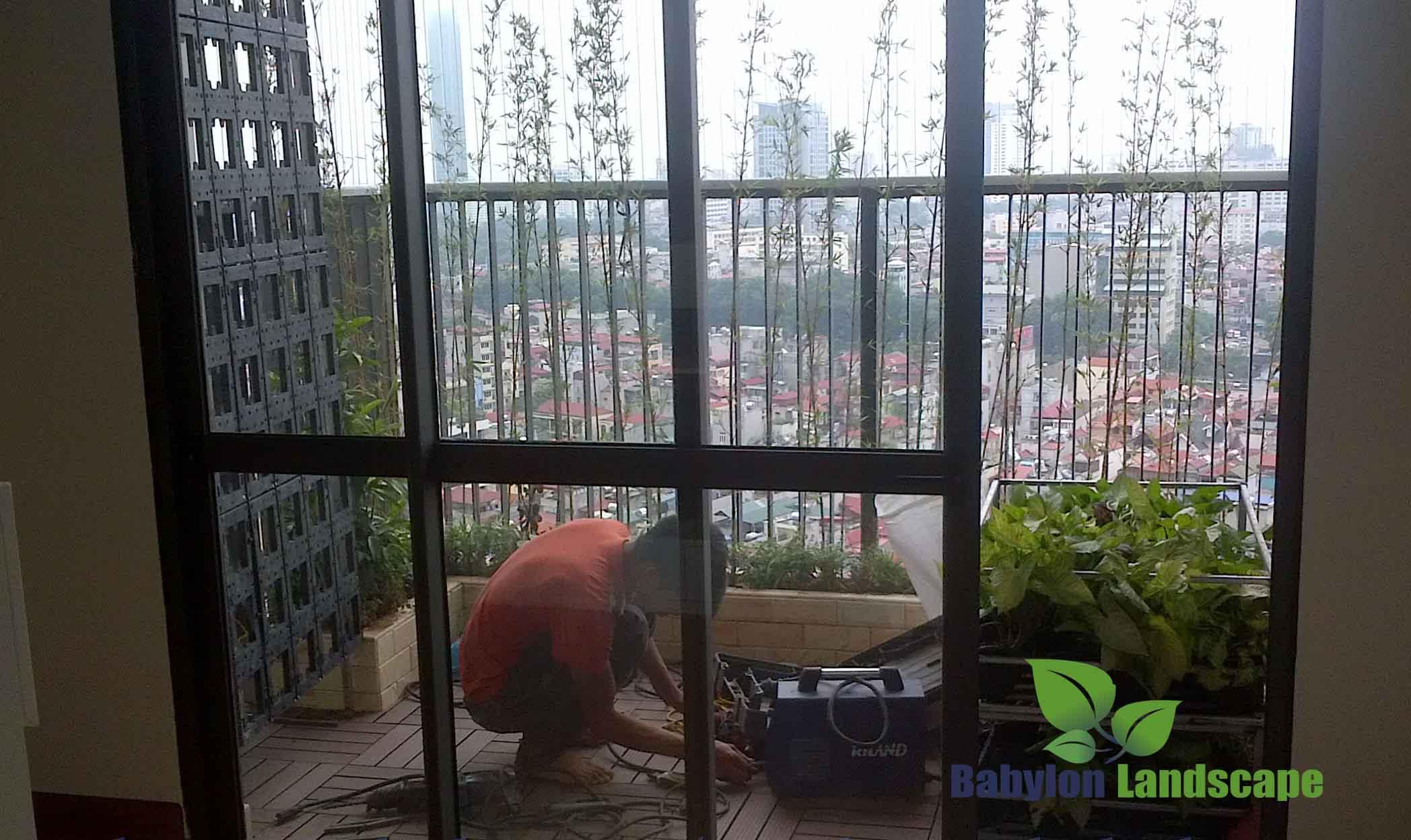 Thi công vườn thẳng đứng ban công chung cư
