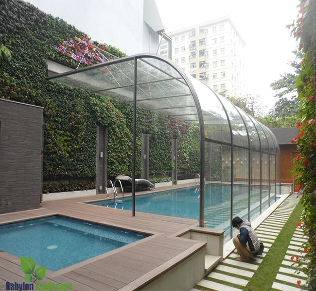 tường xanh và bể bơi