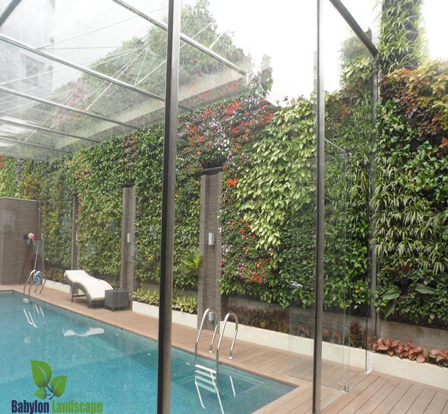 Vườn đứng giá rẻ kết hợp bể bơi