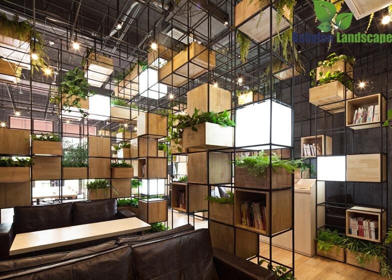 Thiết kế quán cà phê xanh
