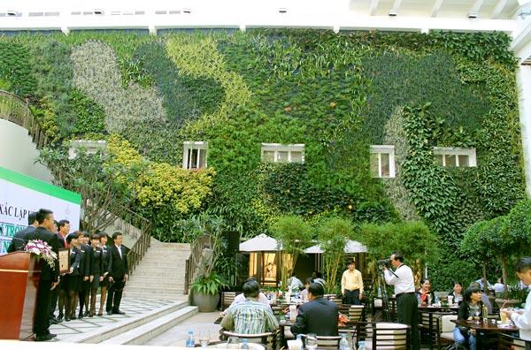 Vườn đứng lớn tại Việt Nam