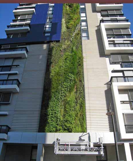 Vườn đứng trên tòa nhà cao tầng