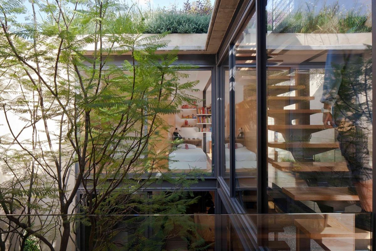 cây xanh cho kiến trúc hiện đại