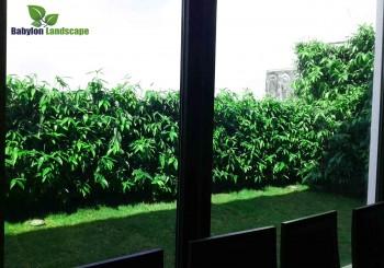 Cải tạo cảnh quan trụ sở văn phòng UBND thành phố Hà Nội