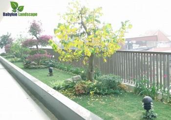 Thi công vườn trên mái trung tâm hội nghị tiệc cưới Mipec Palace