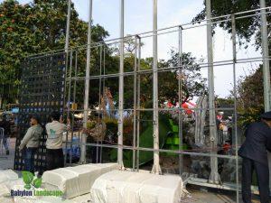 Thi công vườn đứng lễ hội hoa anh đào (GĐ2)