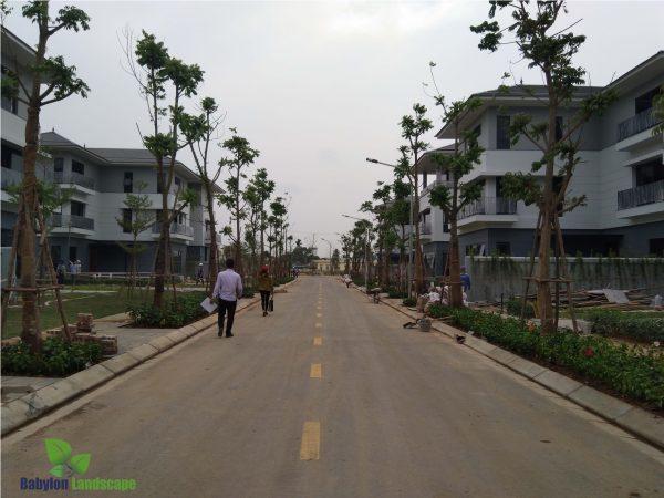 Dự án khu đô thị mới Bắc An Khánh giai đoạn 2
