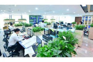 vườn tường tạo không gian xanh cho văn phòng