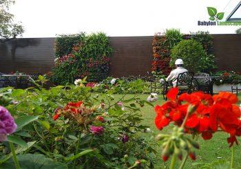 vườn thẳng đứng sử dụng tưới nhỏ giọt