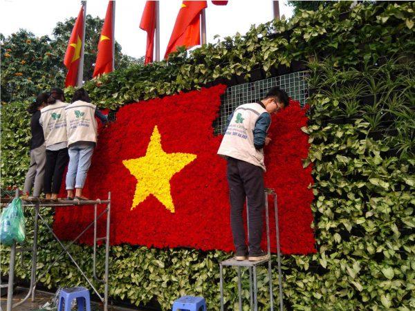 Thi công vườn tường xanh tại vườn hoa Lý Thái Tổ