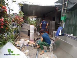 Các bước chuẩn bị cho thi công vườn trên tường