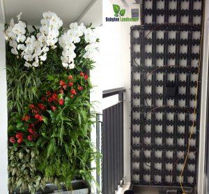 Thi công vườn treo tường tại chung cư Lê Đại Hành