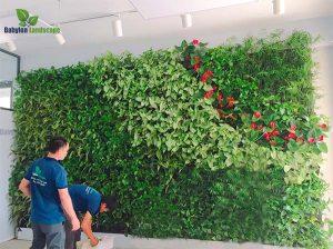 Hướng dẫn thợ cách làm tường cây tại trường Quốc Tế UNIS - Ciputra Hà Nội