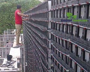 Hệ thống khung để làm vườn thẳng đứng