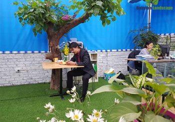 Văn phòng xanh - nơi làm việc của thành viên Babylon