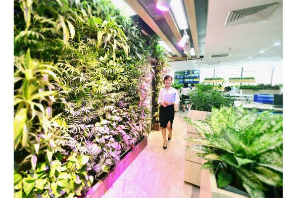 Thi Công Vườn Đứng Tại Hà Nội – Cảnh Quan Babylon