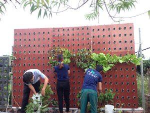 phương án thi công vườn tường khí canh sử dụng hệ thống tưới tự động công nghệ cao