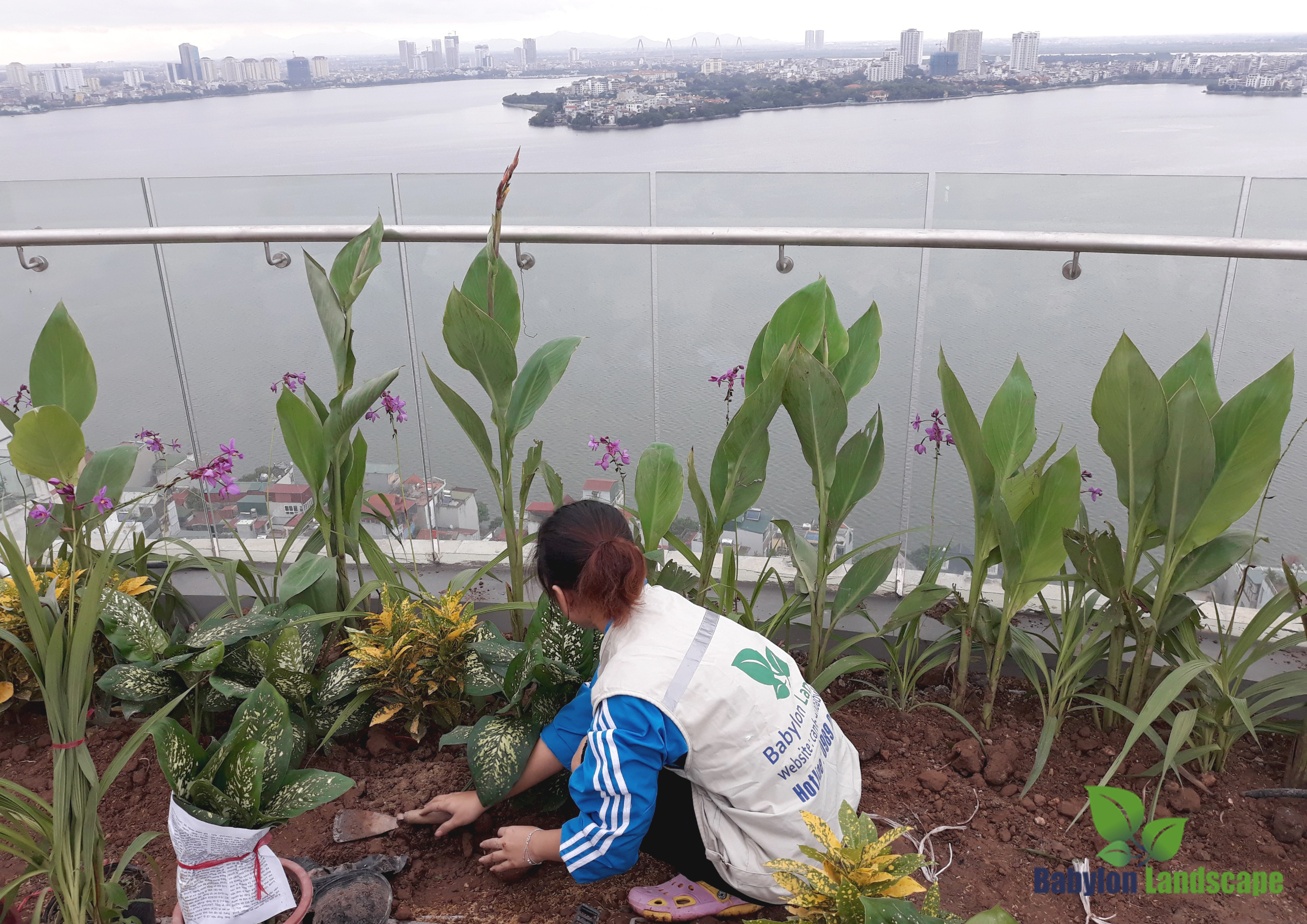 Babylon landscape – nhà thầu thi công vườn trên mái nhà chuyên nghiệp