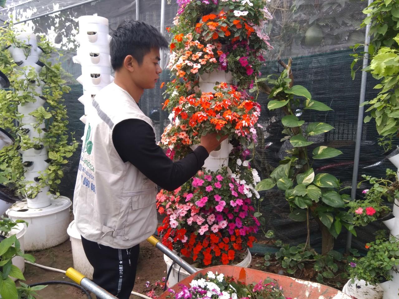 Các bước làm vườn đứng khí canh – Phần 1