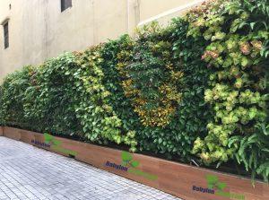 khảo sát để lên kế hoạch chăm sóc vườn tường tốt nhất